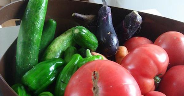 夏野菜をたくさんいただきました、、、ISAKOのひとりごと